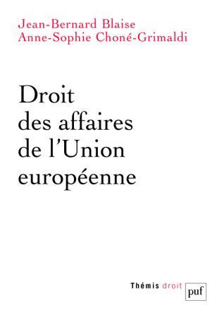 Droit des affaires de l'Union européenne