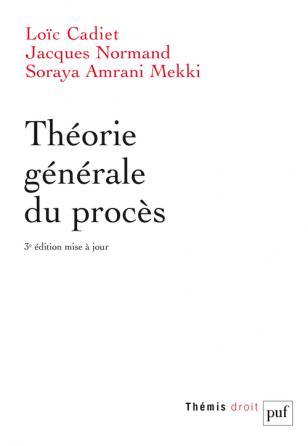 Théorie générale du procès