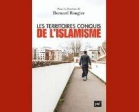 """""""Les territoires conquis de l'islamisme"""" dans les médias"""