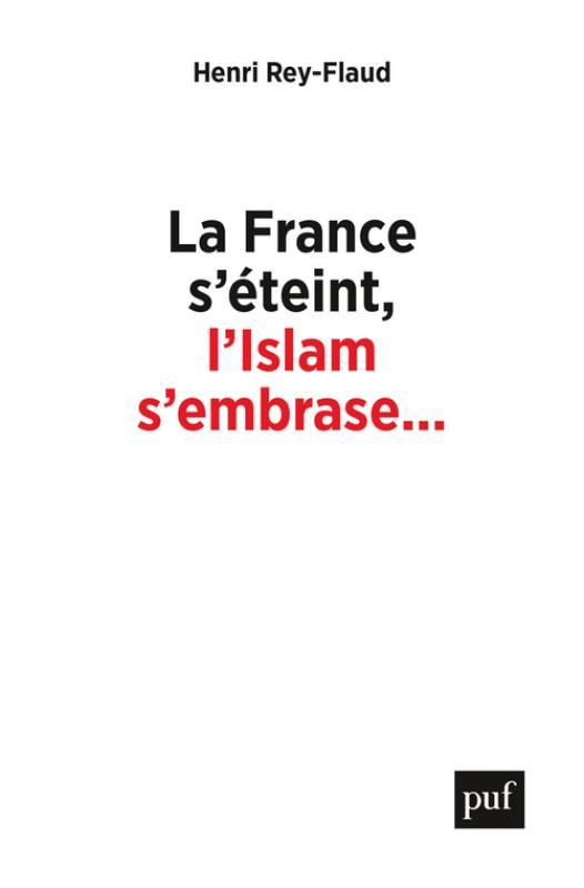 La France s'éteint, l'Islam s'embrase... - Henri Rey-Flaud - Hors  collection - Format Physique et Numérique | PUF